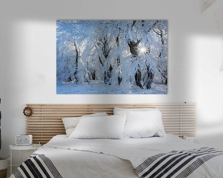 Sfeerimpressie: als in een winterverhaal... van Daniela Beyer