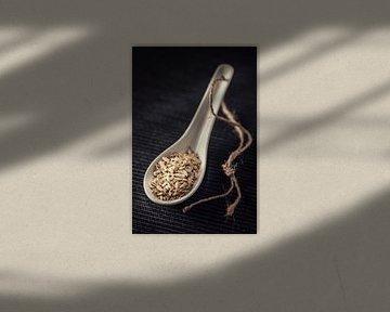Venkel (kruiden, Amuse) van Kristian Hoekman
