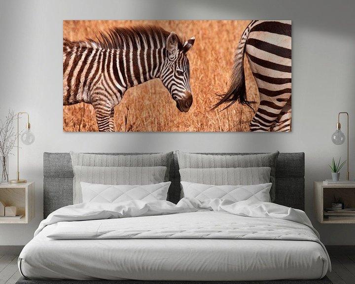 Sfeerimpressie: jonge zebra van Paul Jespers