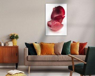 Schil (rode ui drieluik) van Kristian Hoekman