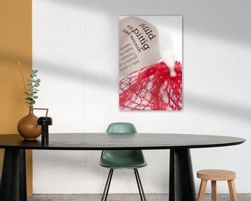 Netje (rode ui drieluik) von Kristian Hoekman