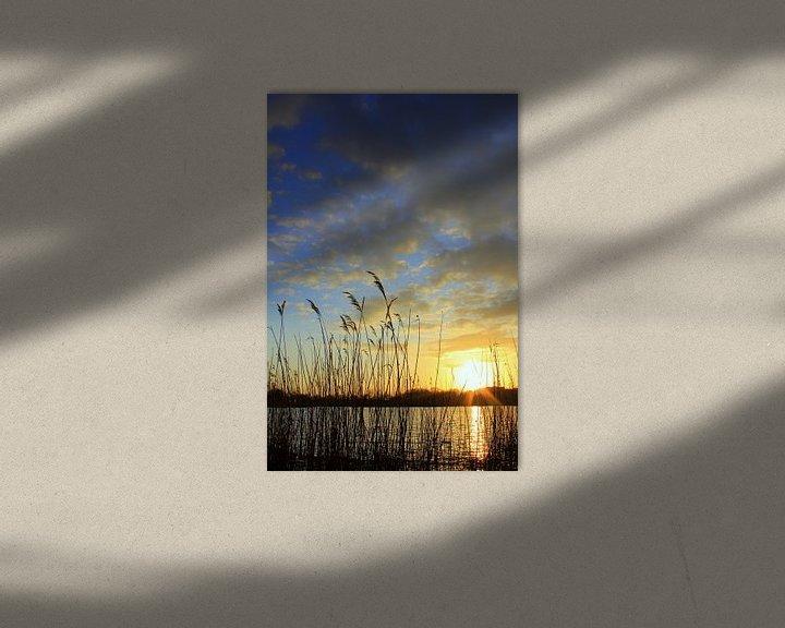 Beispiel: Am Teich von Ostsee Bilder