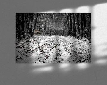 Sneeuw in het bos van Marco Bakker