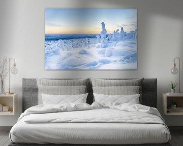 Blauw winterlandschap in Finland van Menno Schaefer