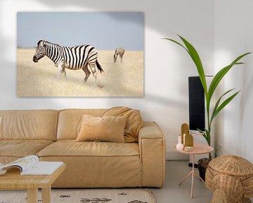 Zebra's in Etosha NP Namibie van Ellen van Drunen
