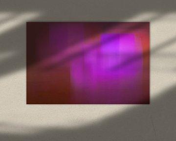 Chasing light, one van Alina van Lierop