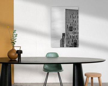Batiment Noir et Blanc / Milan van Thomas Bekker