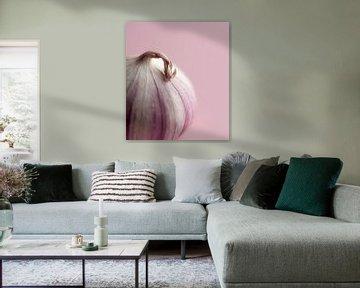 Knoflook (minimalistisch , food) van Kristian Hoekman