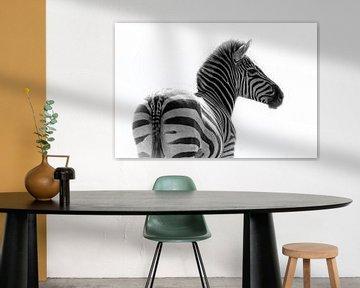Zebra, zwart-wit (Dierenpark Emmen) van Aafke's fotografie