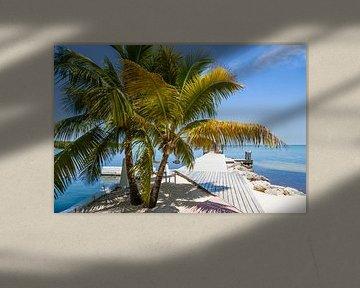 FLORIDA KEYS Dromerig uitzicht van Melanie Viola