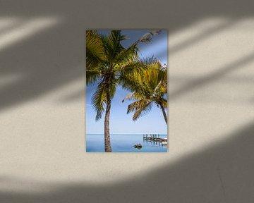 FLORIDA KEYS Paradijselijk van Melanie Viola