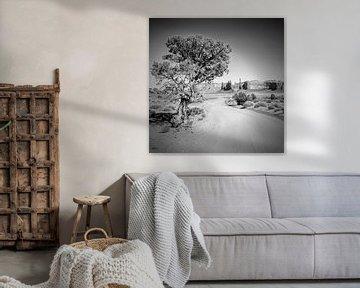 Monument Valley Drive en totempaal z/w van Melanie Viola