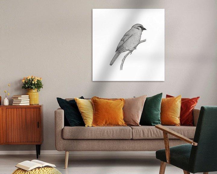 Impression: A bird named Johan sur Charlotte Hartong