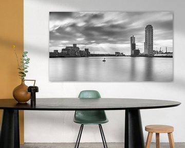De Rijnhaven Rotterdam (Zwart wit) van Rob van der Teen