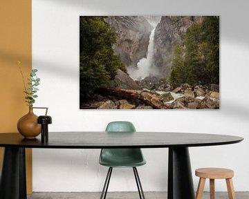 Yosemite Wasserfall von Stefan Verheij