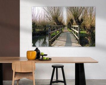 houten bruggetje en een pad met knotwilgen van ChrisWillemsen