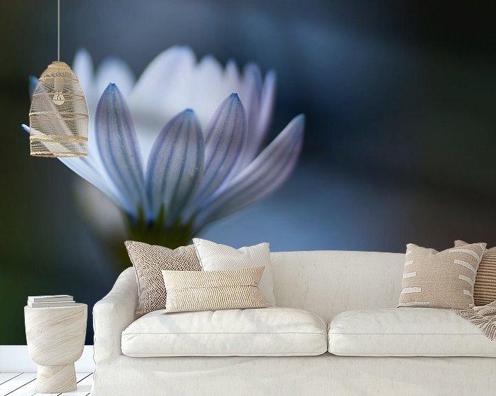 Sfeerimpressie behang: Winterblues van Birgitte Bergman
