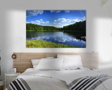 Small lake in the moorlands van Gisela Scheffbuch