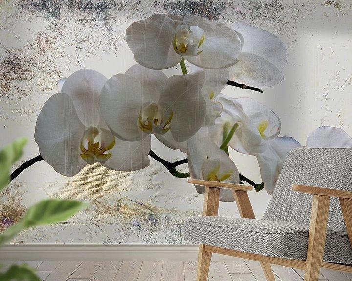 Beispiel fototapete: Ganz in weiss..... - Weiße Orchideen von Christine Nöhmeier