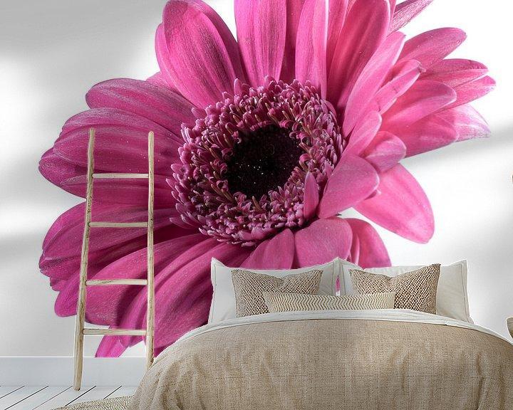 Sfeerimpressie behang: Roze gerbera van Saskia Bon