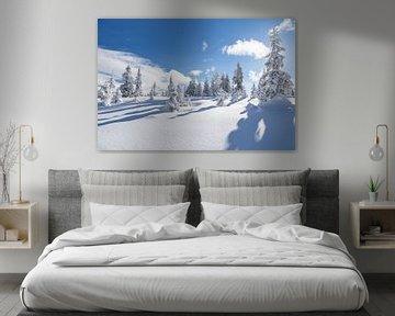 """Winterlandschaft """"Winter Wonderland"""" sur Coen Weesjes"""