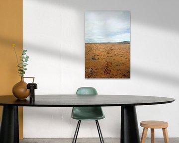 Voetstappen naar de horizon von Jasper Hovenga