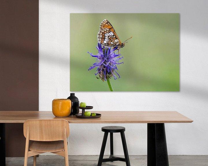 Sfeerimpressie: Alpenparelmoervlinder van Marnix Jonker