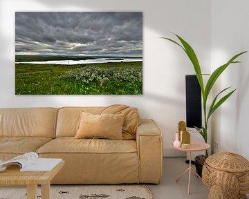 Kijken tot de horizon von Jasper Hovenga