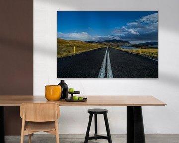 Iceland Road van Freek van den Driesschen