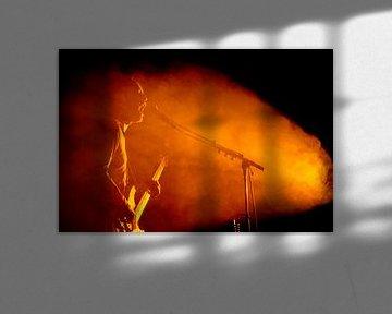 Alan Gevaert de la band Deus