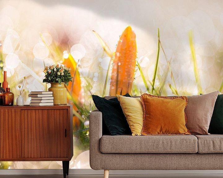 Sfeerimpressie behang: Krokusjes in de ochtend van Christiaan Onrust