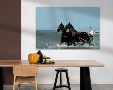 Paarden in zee Ameland