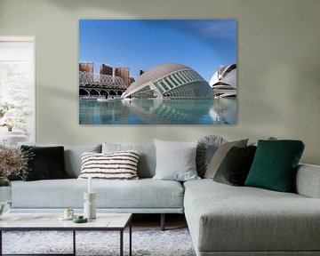Valencia Museum of Arts and Sciences van Ab Wubben
