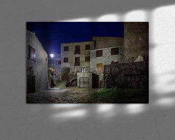 Giglio Castello van Ab Wubben
