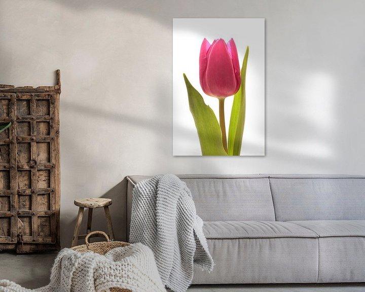 Sfeerimpressie: Rode Tulp van Saskia Bon