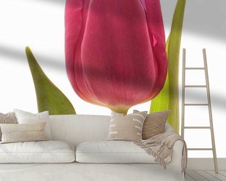 Sfeerimpressie behang: Rode Tulp van Saskia Bon
