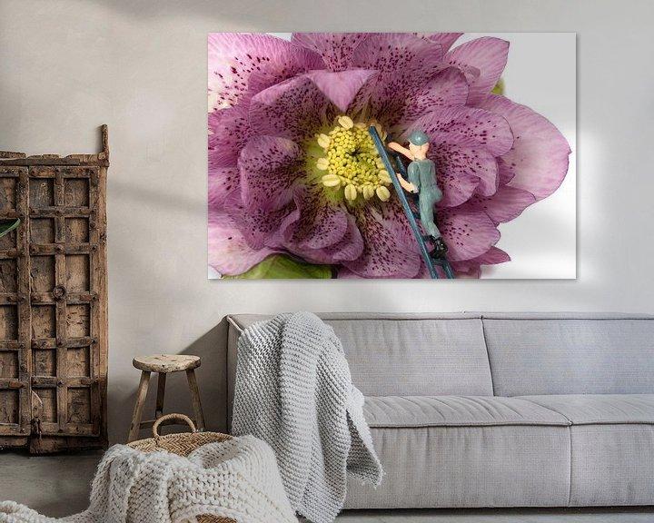 Sfeerimpressie: mannetje zorgt voor onderhoud van een bloem van Compuinfoto .