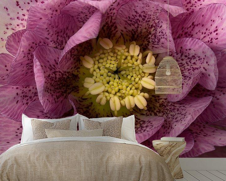 Sfeerimpressie behang: macro van een paarse kerstroos van Compuinfoto .