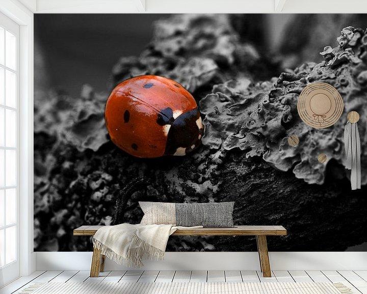 Sfeerimpressie behang: Ladybird colorkey van Malte Pott