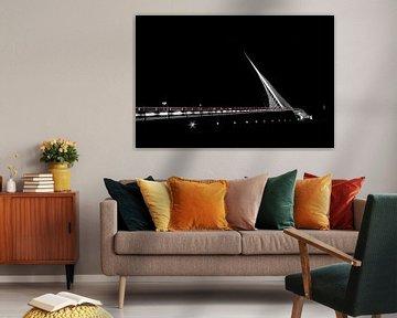 Citer by  Calatrava von Barend Koper