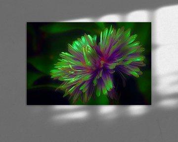 FlowerPower sur Yvonne Blokland