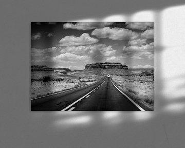 Op weg naar Monument Valley van Marjan Tenk