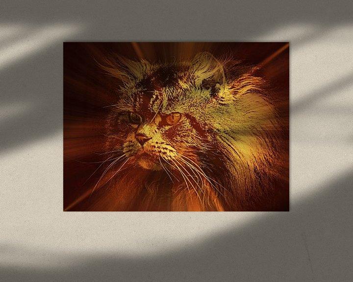 Beispiel: Shining light on Main Coon Cat von Leo Huijzer