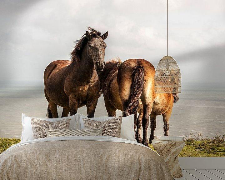 Beispiel fototapete: Pferde an White Cliffs Dover von Ton de Koning