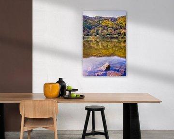 De moezel in herfstkleuren van Studio  Milaan