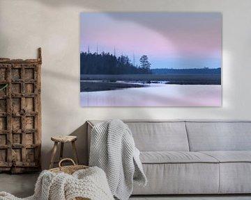 Roze rust van Karla Leeftink