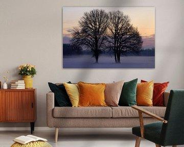 Winter feelings van Marcel van Rijn
