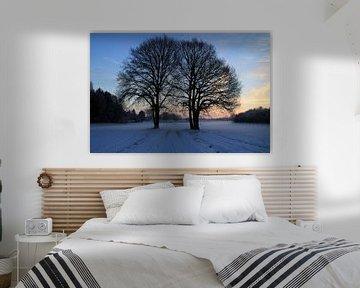 Winter van Marcel van Rijn