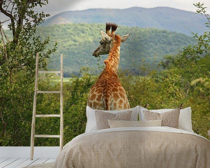 Sfeerimpressie behang: southafrica ... waiting for you van Meleah Fotografie