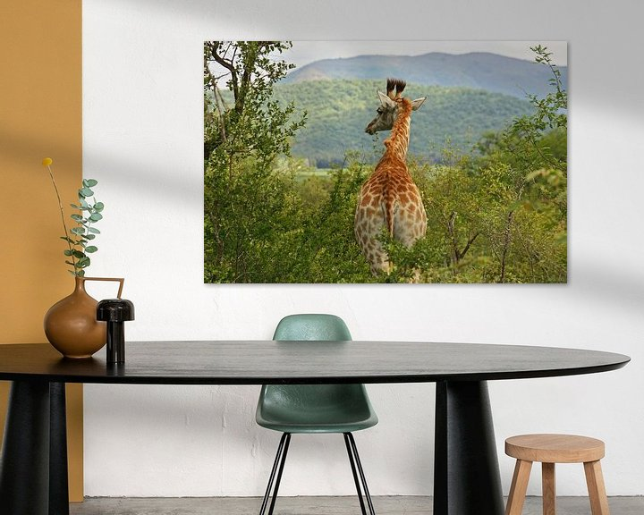 Sfeerimpressie: southafrica ... waiting for you van Meleah Fotografie